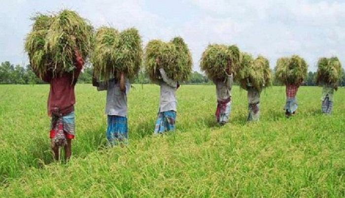 Bangladesh hit record 7.86 percent GDP growth