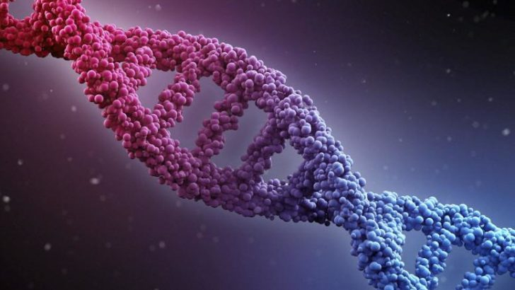 Researchers discover gene that protects against dementia