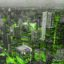 City size and structure may influence influenza epidemics