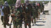 Al-Shabab in Somalia: US air strike 'kills 60 militants'